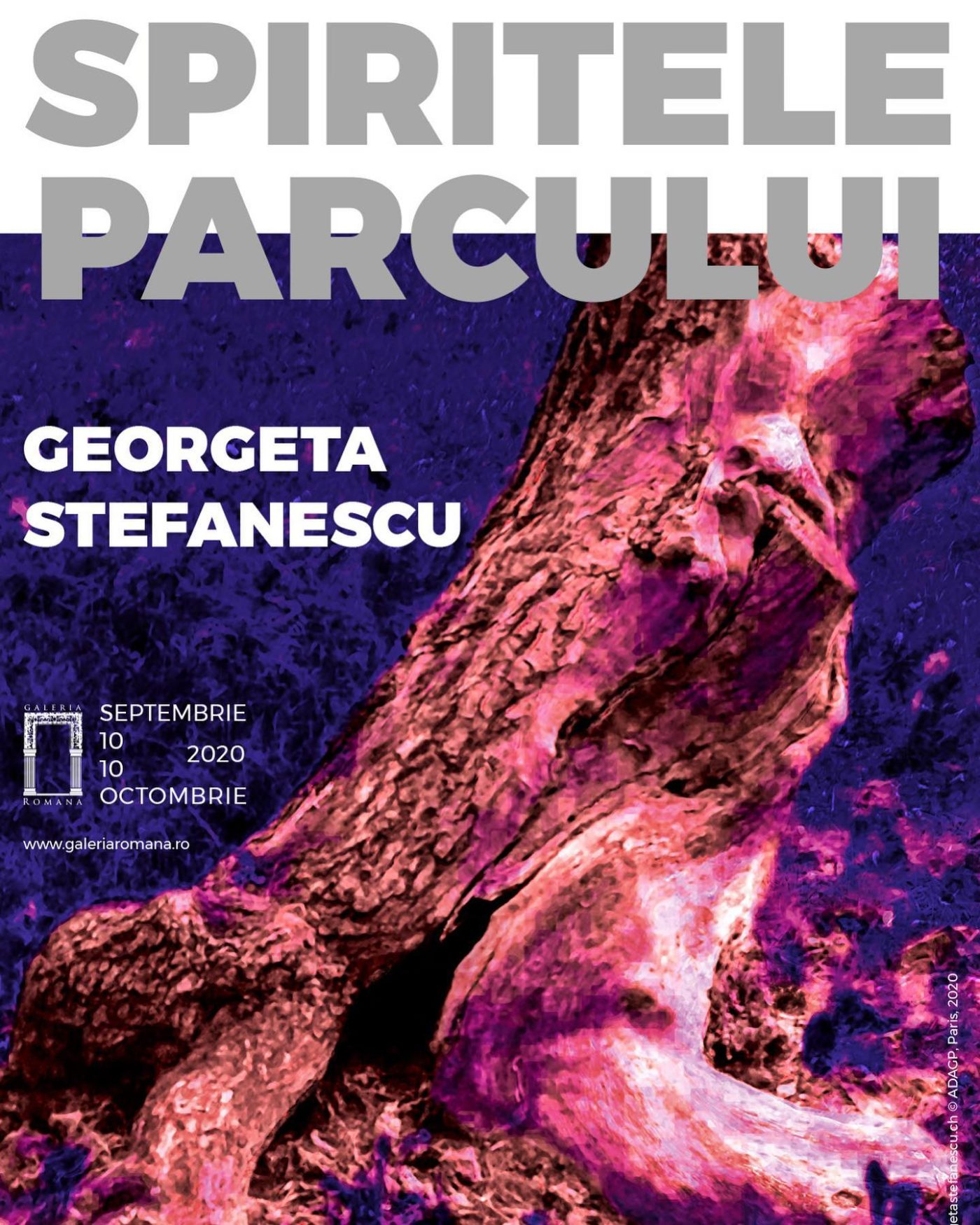 "A moment from ""Spiritele parcului"" exhibition by Georgeta Stefanescu @ Galeria Romana"